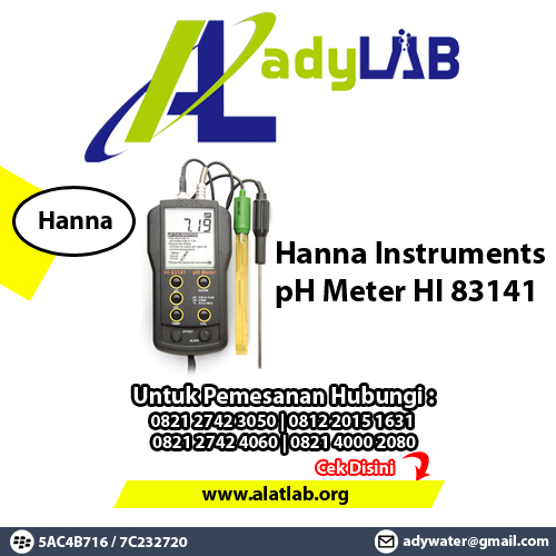 Hanna Instruments HI 83141 pH Meter